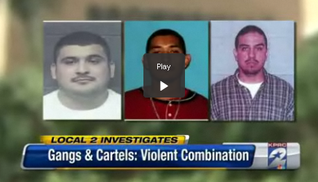 what gangs are in illinois