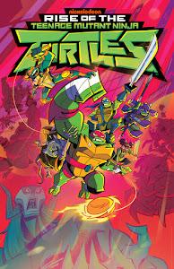 Rise of the Teenage Mutant Ninja Turtles Poster