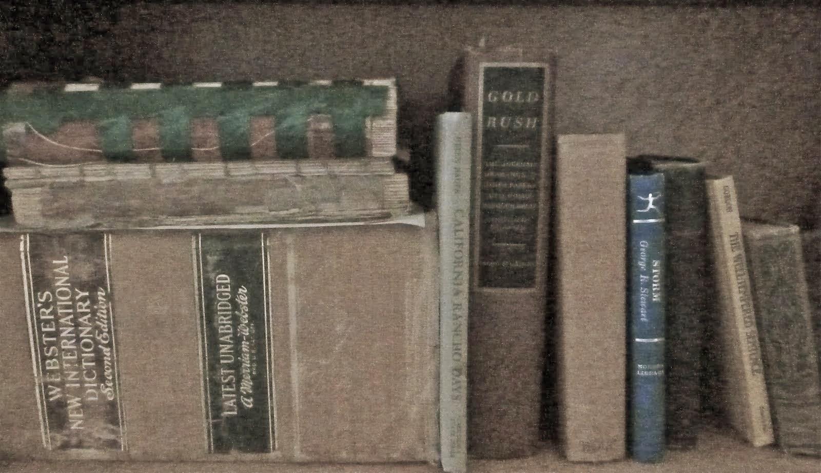 Bumpa's Bookshelf