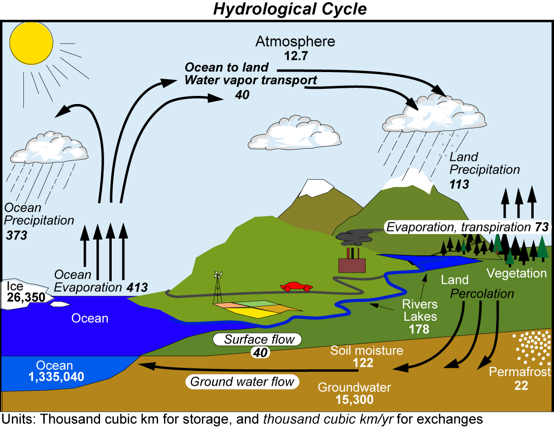 Hydrologic Cycle - Pictures, posters, news and videos on your pursuit ...