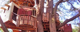 Foto TreeHouses
