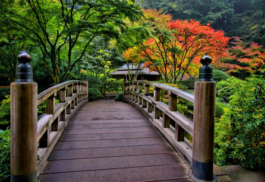 wooden bridge wallpaper - photo #24