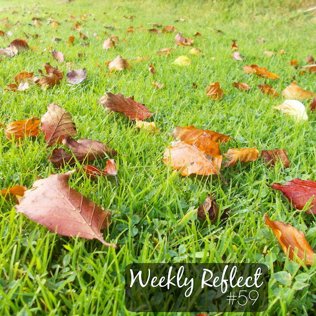 Weekly Reflect #59 // Autumn leaves!