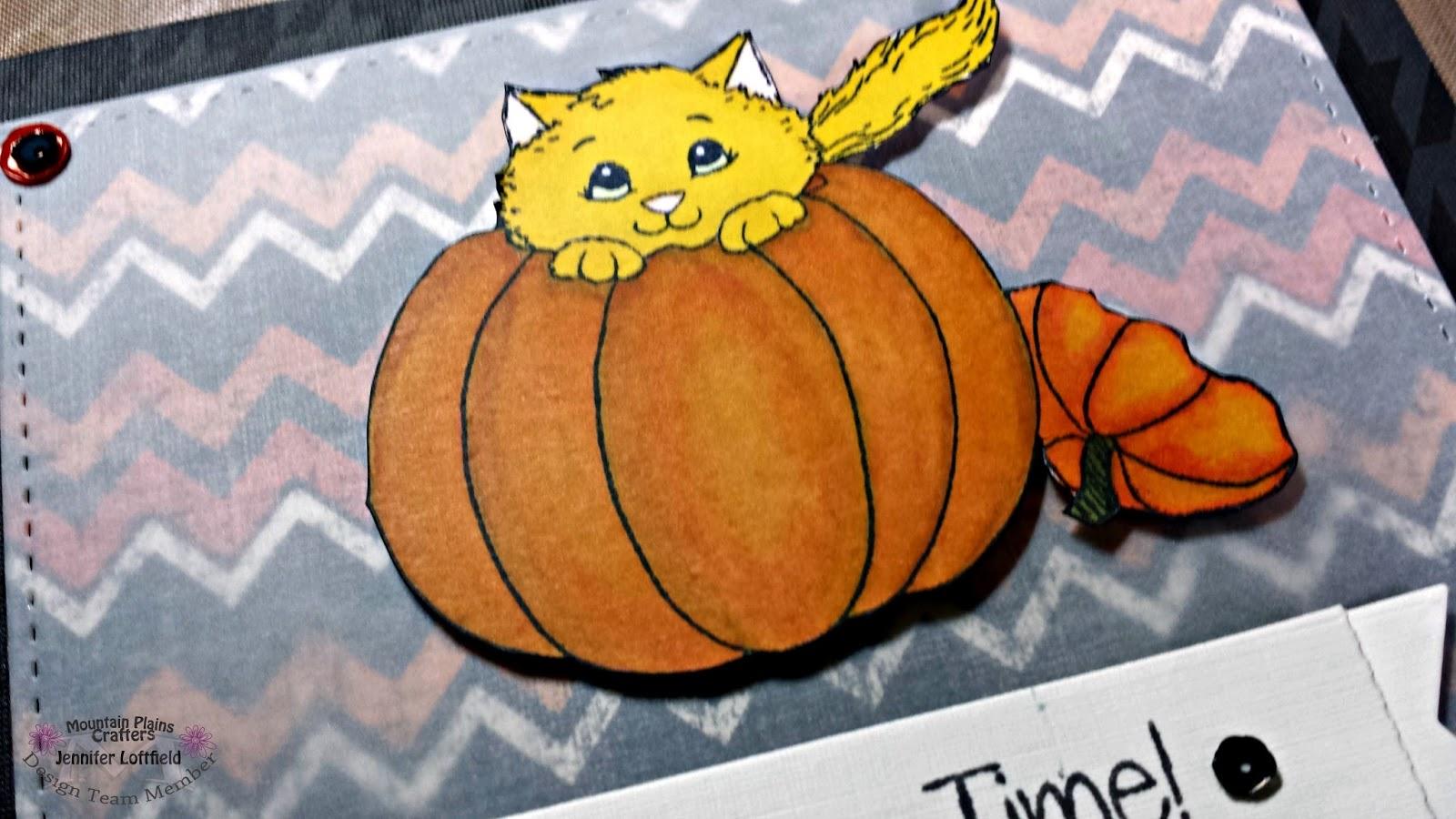 close up of colored cat in pumpkin
