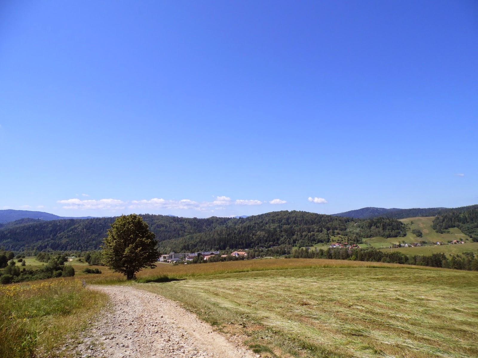 Krajobraz w okolicy Muszyny-Złockiego przy szlaku na Jaworzynę Krynicką