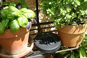 verbrauchermeinung solar f r den garten erste erfahrungen. Black Bedroom Furniture Sets. Home Design Ideas