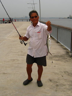 Tarpon or Hai Leng 大眼海鲢 Caught by Ah Ling At Woodland Jetty on 7th April 2013.