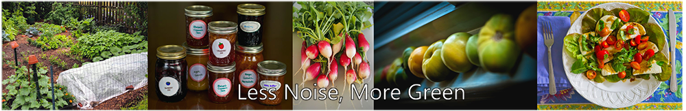 Less Noise, More Green