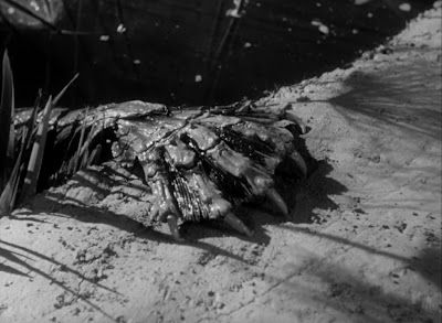 The gill-man's hand in Creature from the Black Lagoon