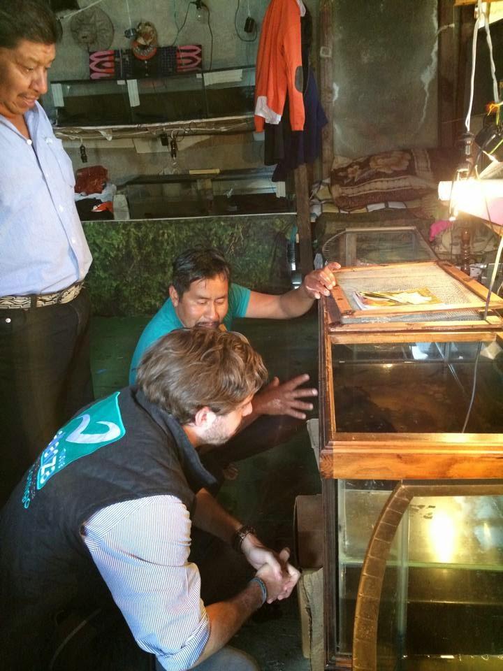 Reproducción y conservación del Axolote