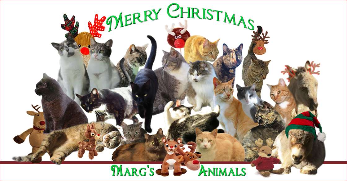 Margs Animals