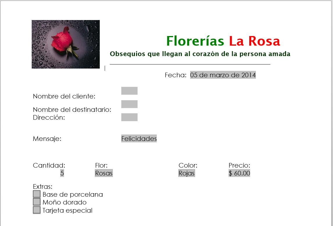 Plantillas, Formularios y Macros | Software de Aplicación Ejecutivo