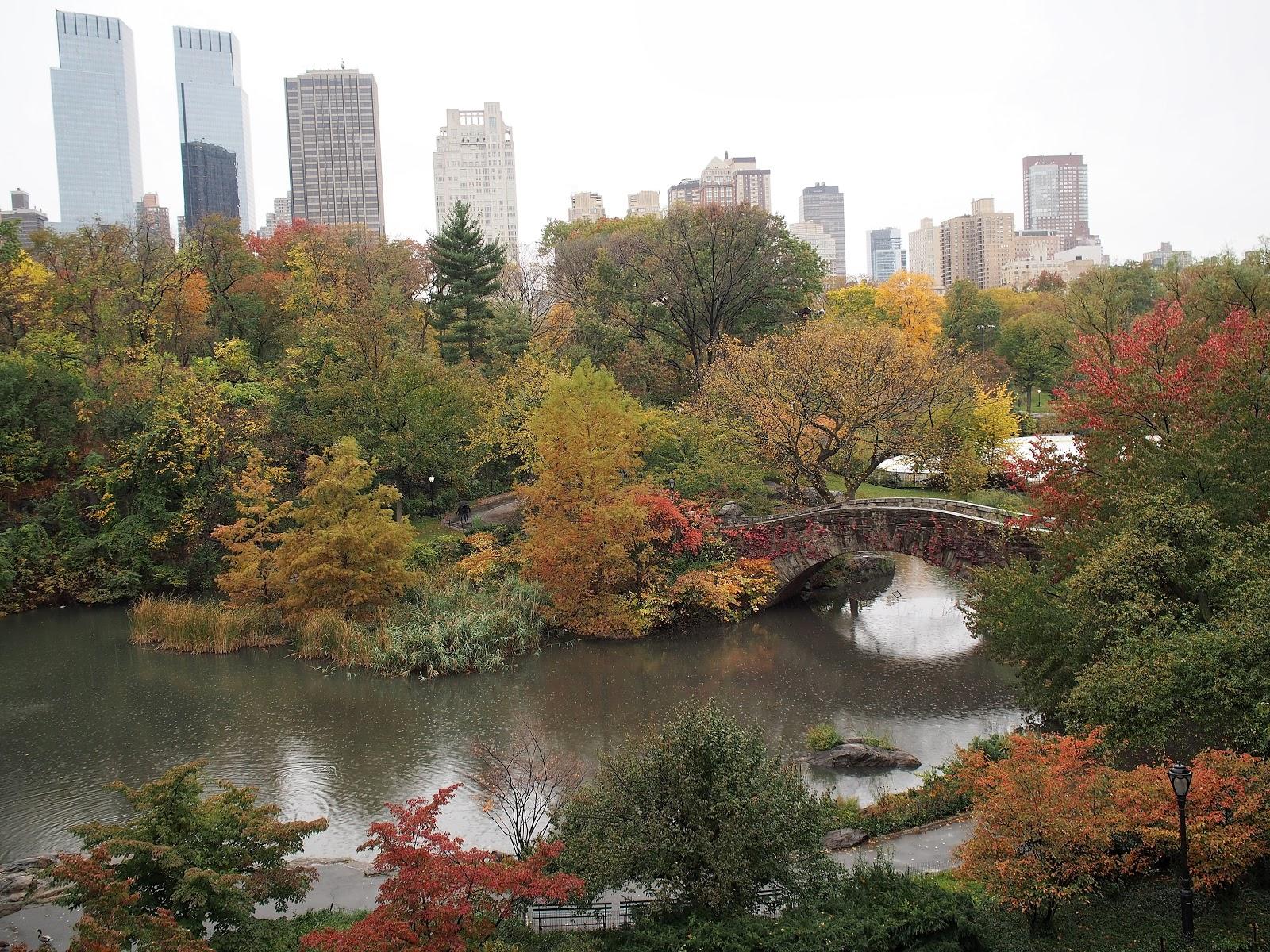 Gapstow Bridge, #GapstowBridge #Gapstow #CentralPark #NYC #2014 #fall #fallfoliage #fallincentralpark