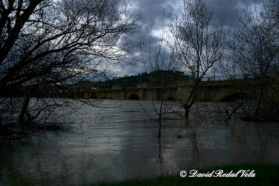 Río Ebro Tudela Navarra