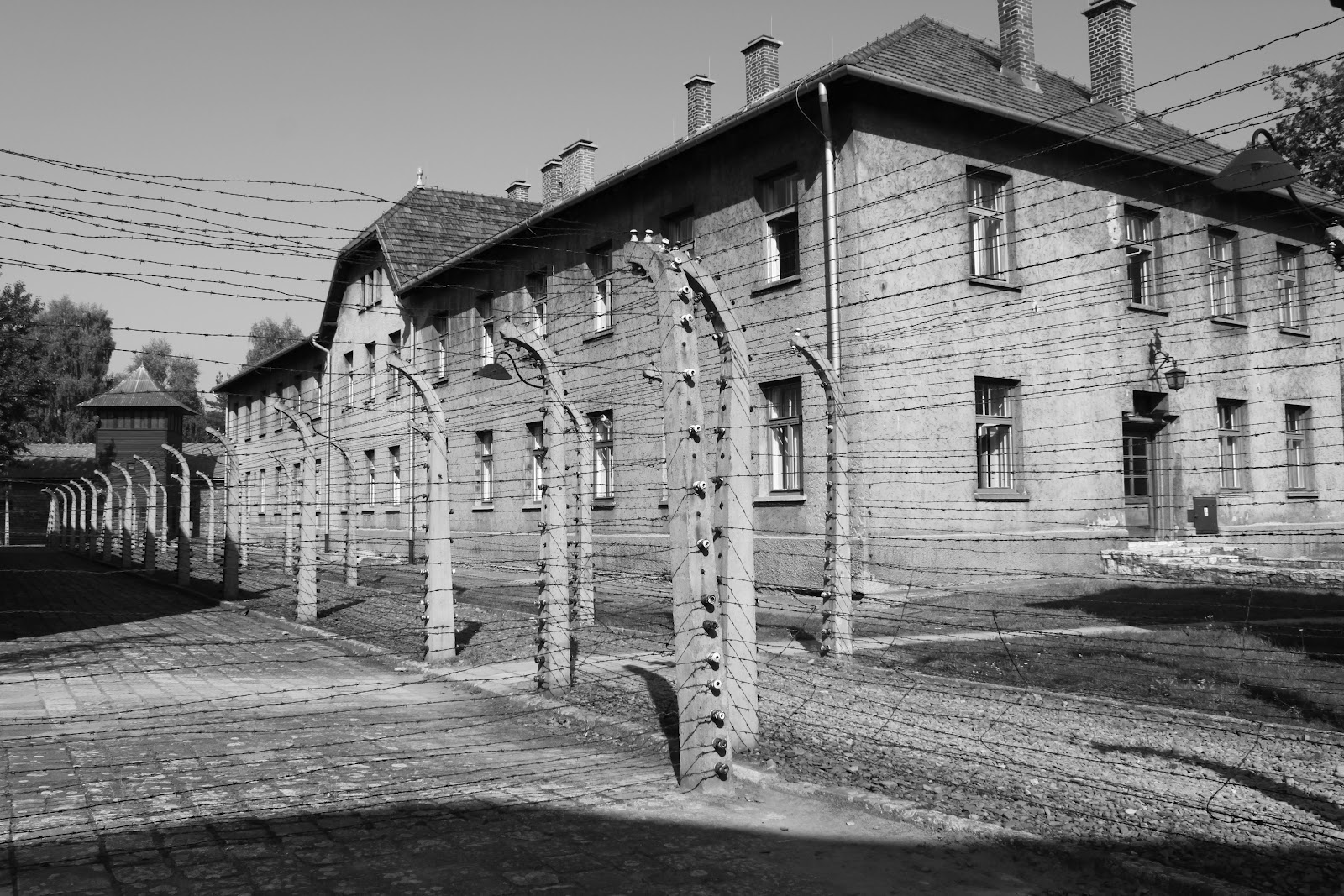 the horrors inside the auschwitz nazi concentration camp The first time i met lale sokolov, the tattooist of auschwitz, was eight weeks after his wife had died.