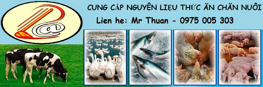 Chuyên bán Bã hèm bia 50% đạm, bột men bia. Mr Thuận 0975 005 303