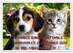 TRINTA E CINCO MIL VISITANTES !!!