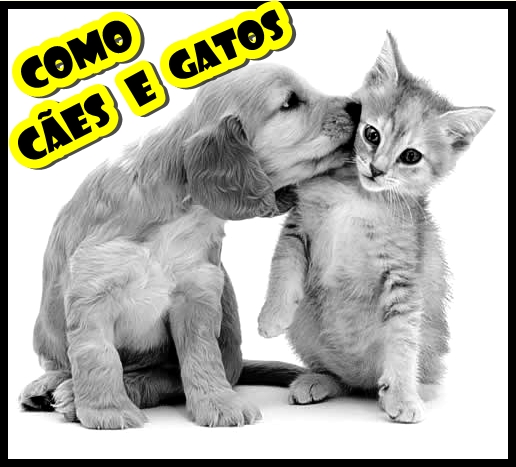 Como Cães e Gatos