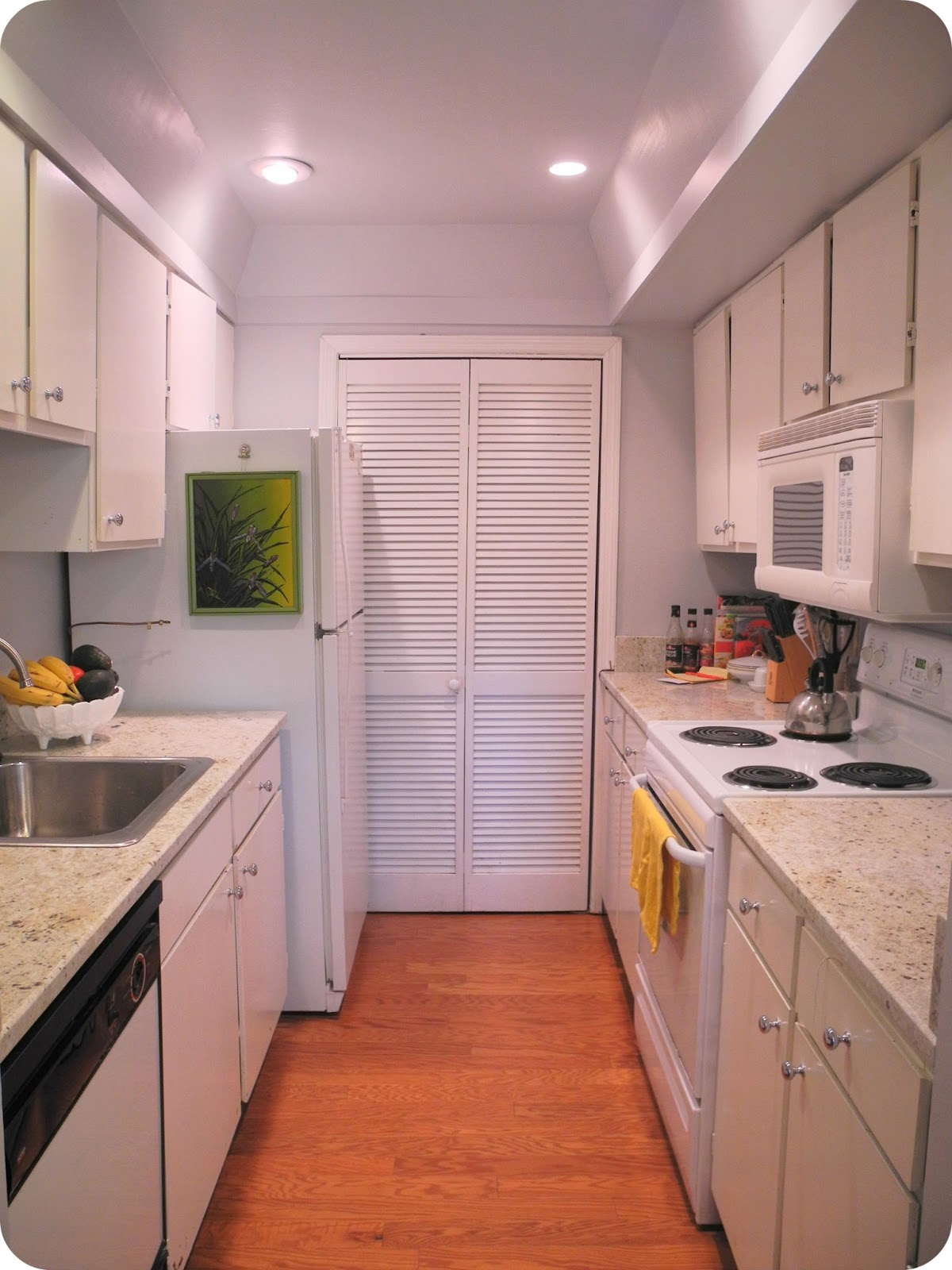 Librarian tells all what 39 s cooler than bein 39 cool galley for Galley kitchen remodel