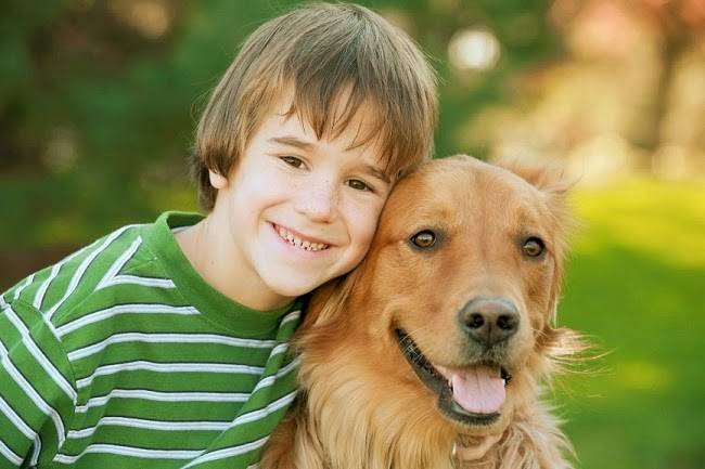Pies-terapeuta