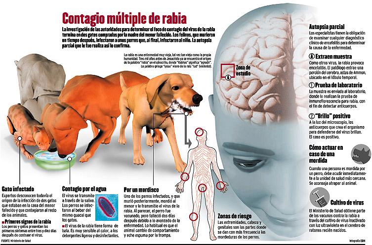 chiflar  Diccionario InglésEspañol WordReferencecom
