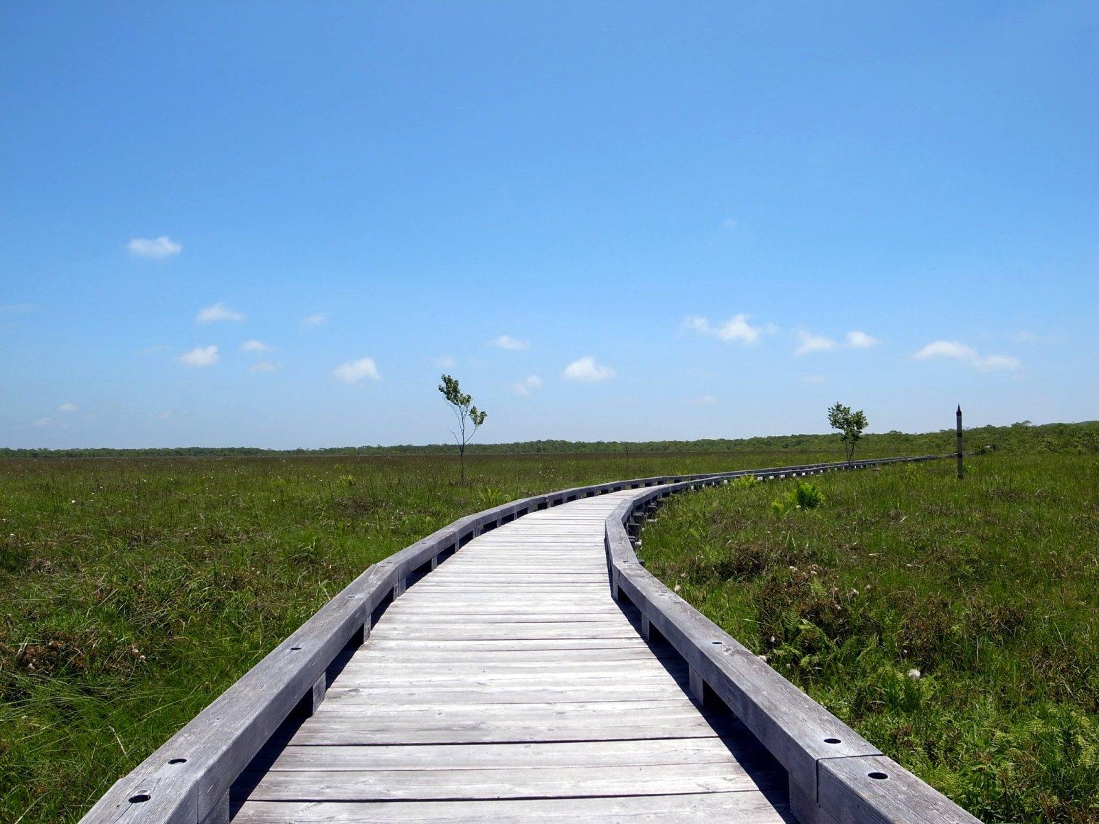 釧路湿原国立公園