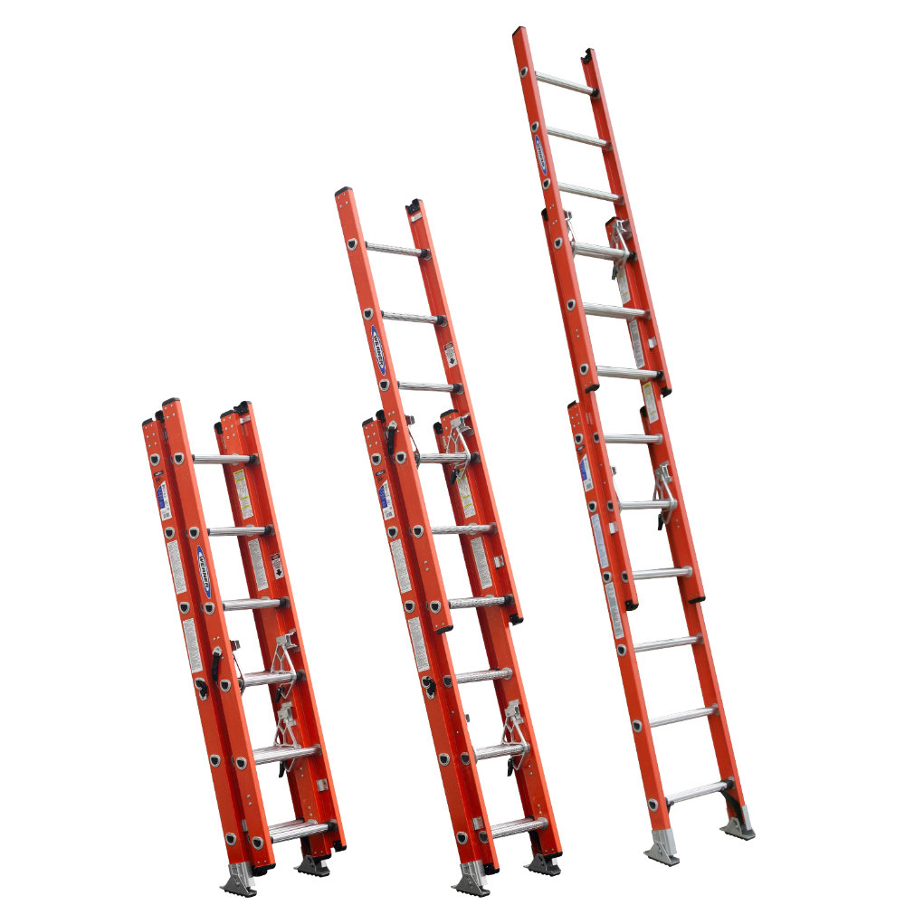 Bird Ladder And Scaffolding Safety Blog