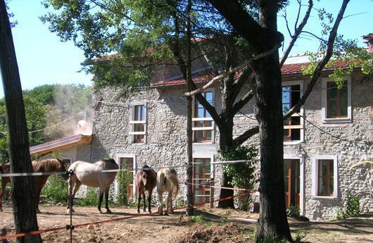 Fabbricato rurale definizione confortevole soggiorno - Accatastamento casa ...