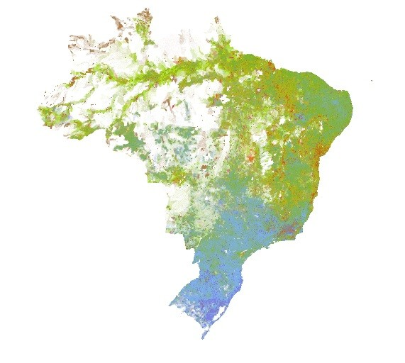 Urban Demographics Brazil Racial Dotmap