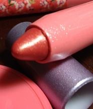 tarte gifts from the lipstick tree lipsurgence lip luster achiote
