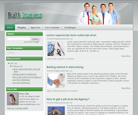 Health Insurance Blogger Theme