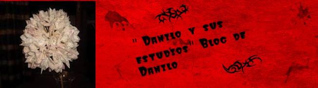 Danilo y sus estudios