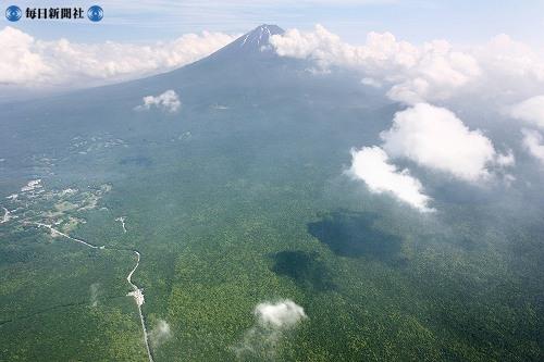 Статья про Японию - лес Аокигахара у подножия Фудзиямы