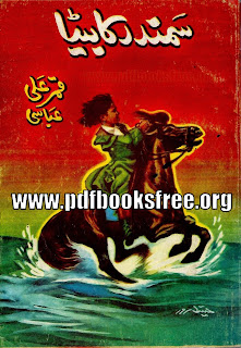 Samandar Ka Beta By Qamar Ali Abbasi Free Download in PDF
