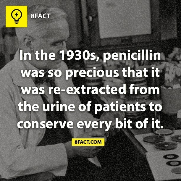 In the 1930s, penicillin was so precious that it was re-extracted from the urine of patients to conserve every bit of it.