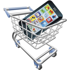 Mobile commerce website