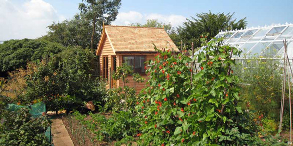 Largest Garden Shed Without Planning Permission