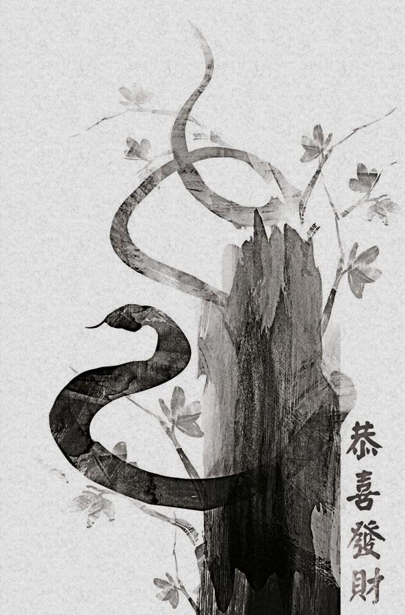 chinese art snake - photo #15