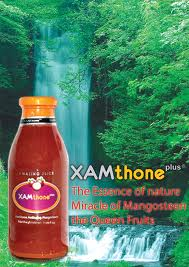 Agen Xamthone Plus Grobogan