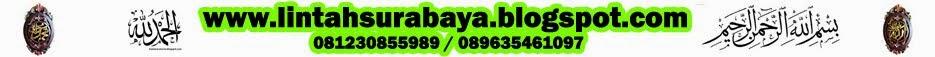 LINTAH SURABAYA | 081230855989 | JUAL LINTAH TERAPI | MINYAK LINTAH PAPUA, RAWA, KEBO