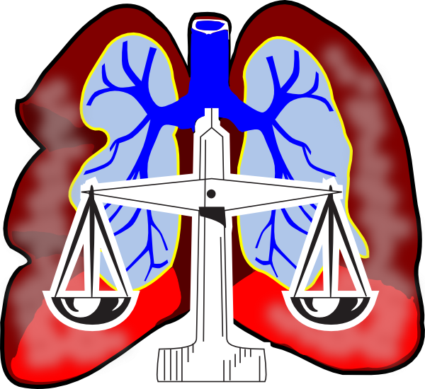 Mesothelioma Law Firm | Asbestos Exposure | Cancer Treatment