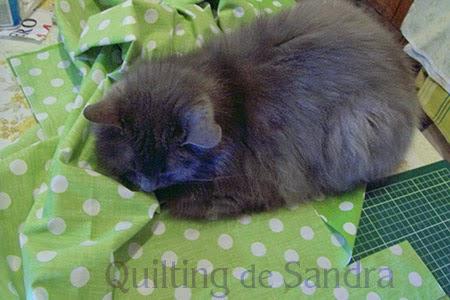 Tela para cojines en verde + gata