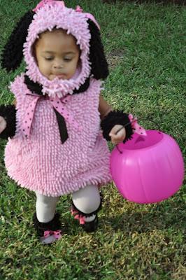 http://www.amazon.com/Princess-Paradise-Poodle-Toddler-Costume/dp/B005OTI4S2/ref=sr_1_1?ie=UTF8&qid=1383350641&sr=8-1&keywords=pink+poodle+costume