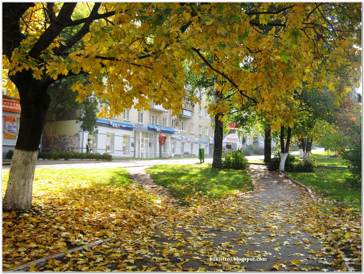 Фото Осенний дождь на улицах города