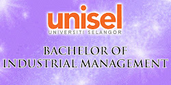 Bachelor of Industrial Management