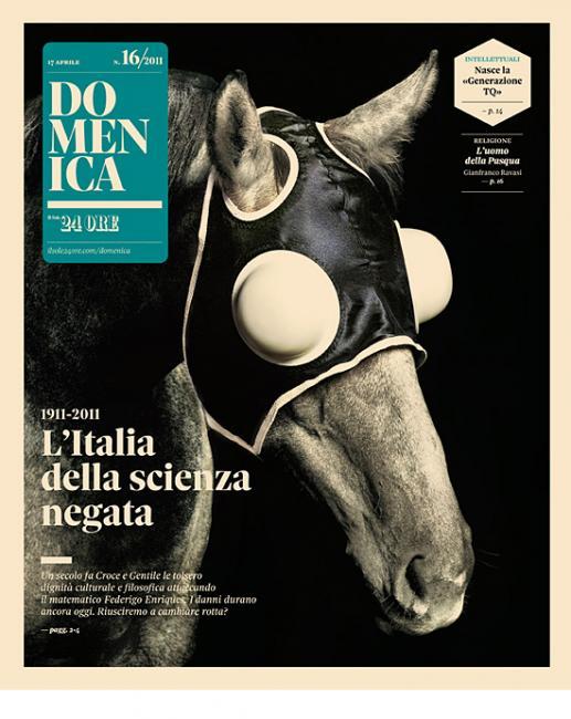 Domenica Horse Cover