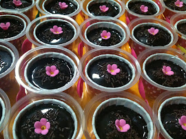 Choc Moist Cupcakes with Top Choc (M) @ RM1.80