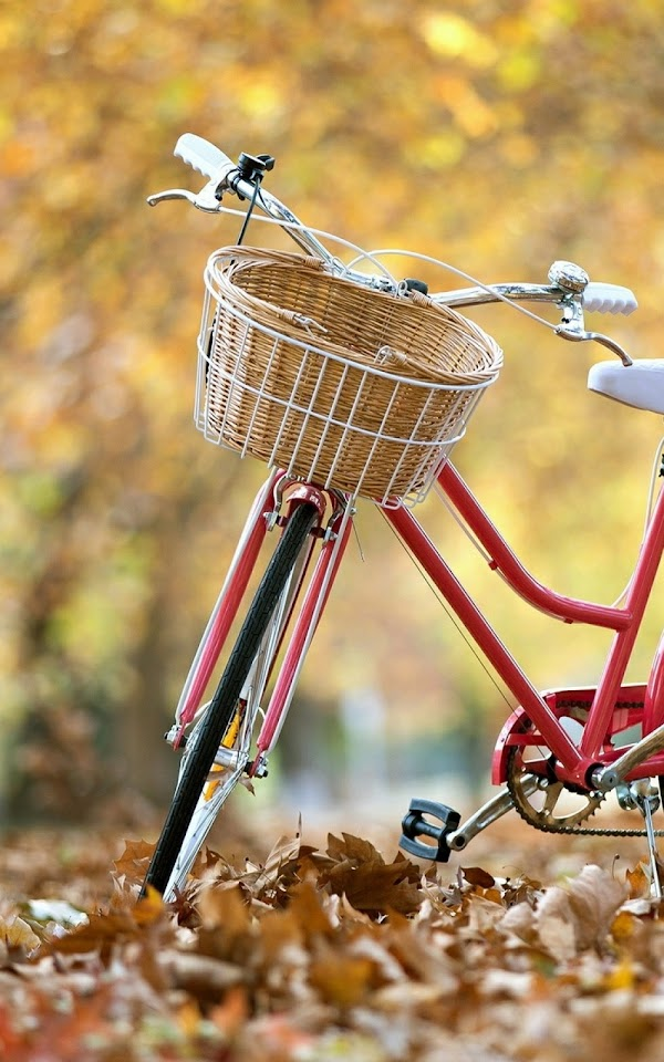 Autumn Landscape Red Bicycle  Galaxy Note HD Wallpaper