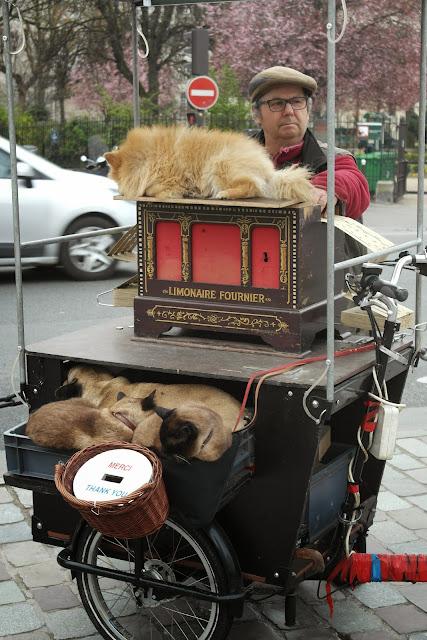 Paris busker musician