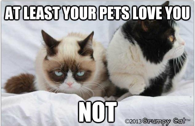 there have been endless fun valentines from the hilarious grumpy cat on facebook today so i thought i would share a few with all of you